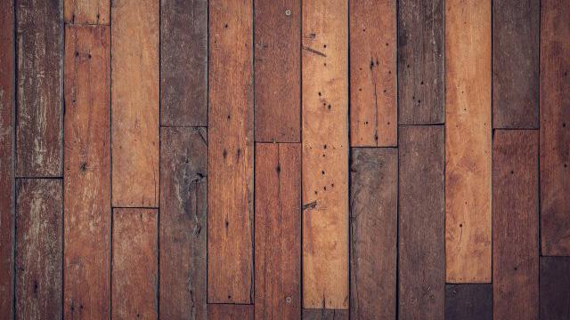 Tratamientos para la madera para eliminar termitas y carcomas. Barcelona